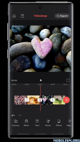Videoleap Editor by Lightricks v1.1.0.1 [Pro] [Mod Extra]